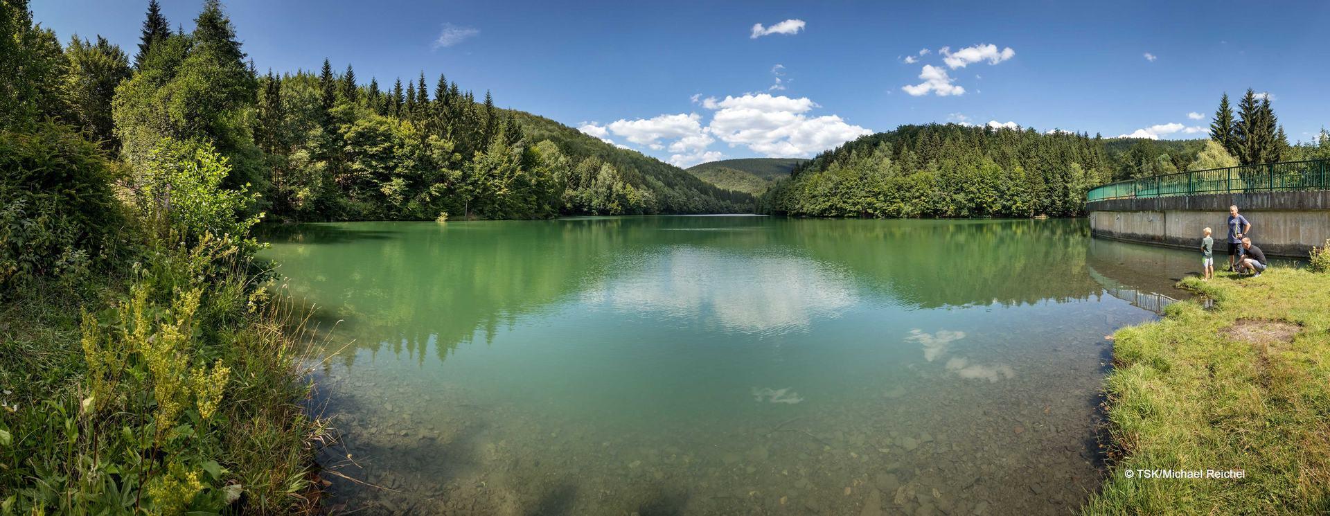 Blick auf die Talsperre Erletor in Hirschbach im Sommer